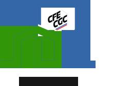 SNUHAB CFE-CGC